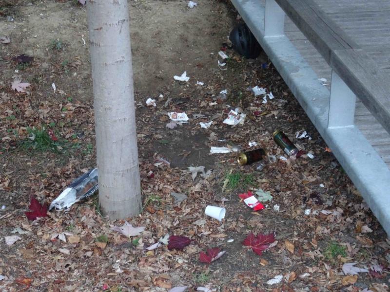 Encombrants, poubelles et caddies Dsc00322