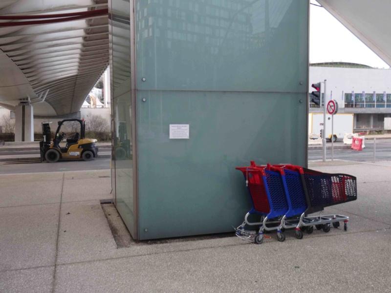 Encombrants, poubelles et caddies Dsc00956