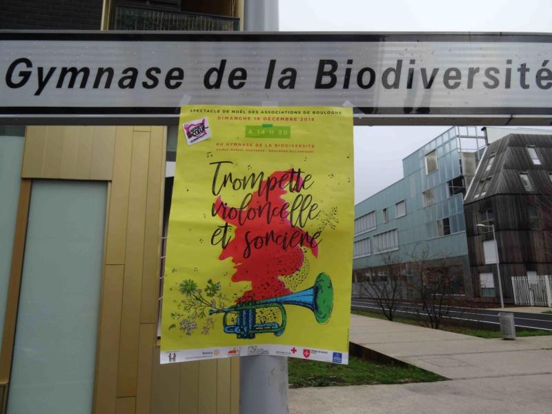 Spectacle de Noël des associations de Boulogne-Billancourt Dsc01010