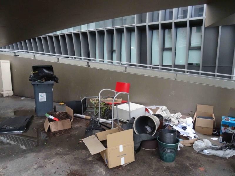 Encombrants, poubelles et caddies Dsc01135
