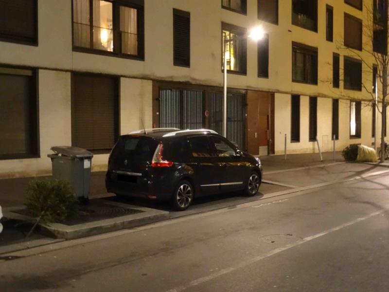 Collecte de sapins par Grand Paris Seine Ouest (GPSO) Dsc01165