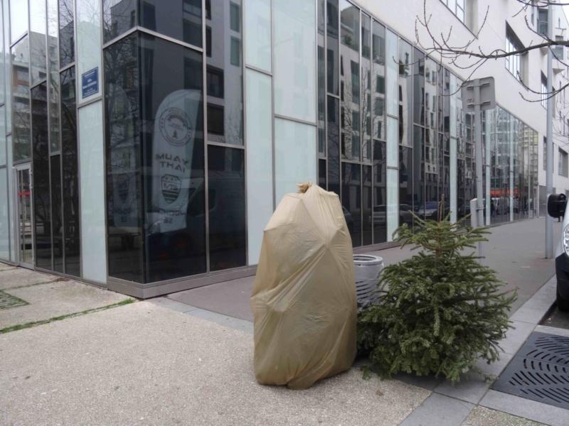 Collecte de sapins par Grand Paris Seine Ouest (GPSO) Dsc01210