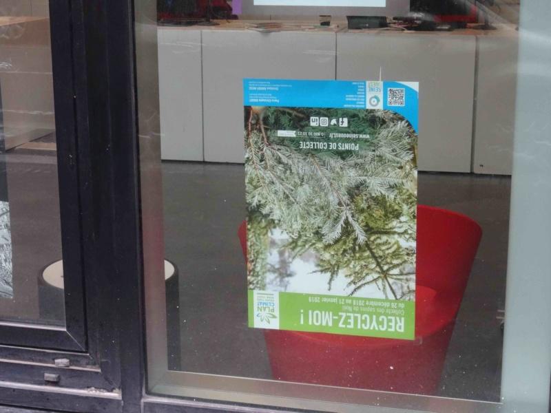 Collecte de sapins par Grand Paris Seine Ouest (GPSO) Dsc01216