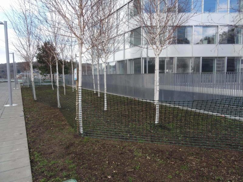Jardin des Tours Dsc01525