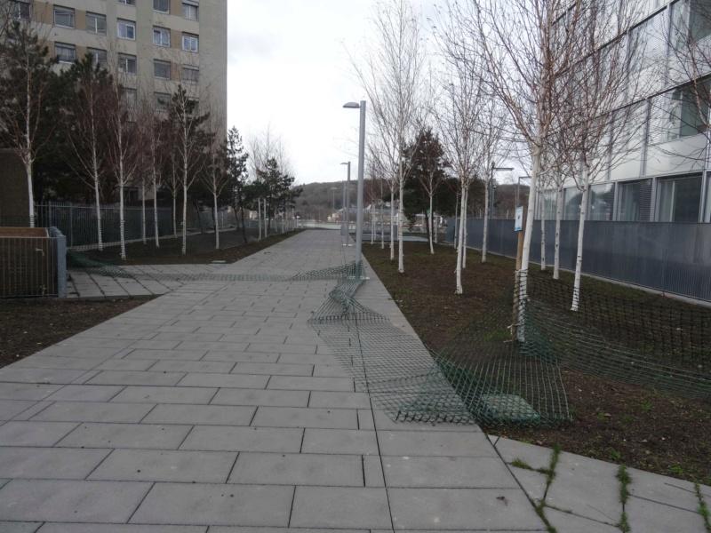 Jardin des Tours Dsc01631