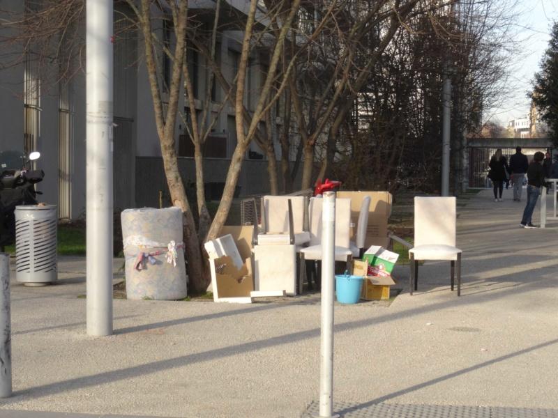 Encombrants, poubelles et caddies Dsc01643