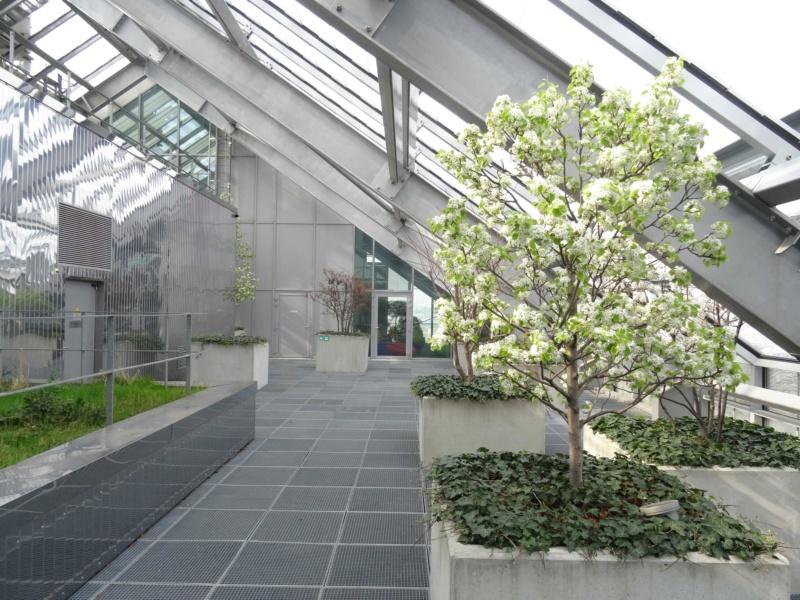 Immeuble Horizons (C1) Dsc02127