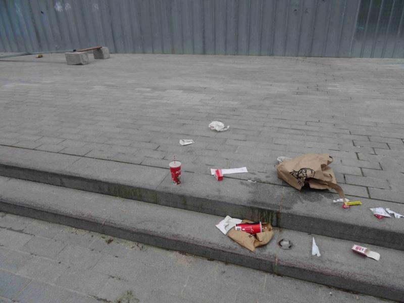 Encombrants, poubelles et caddies Dsc02547