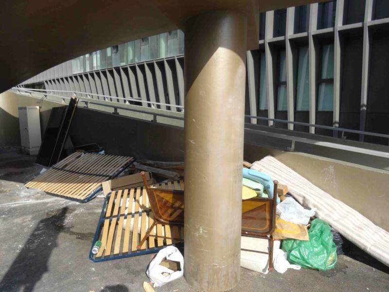 Encombrants, poubelles et caddies Dsc02911