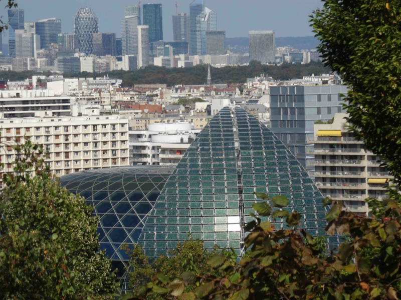 La Seine Musicale de l'île Seguin Dsc03410