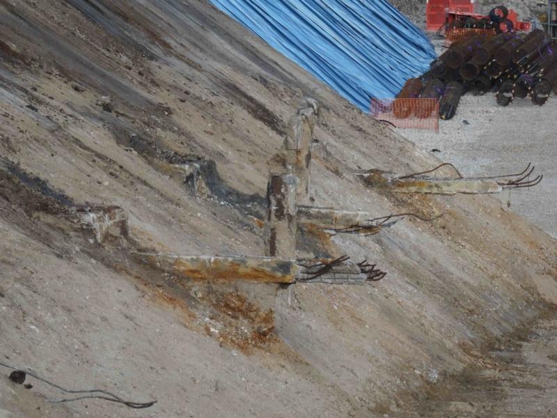 Travaux sur la partie centrale de l'île Seguin Dsc09049