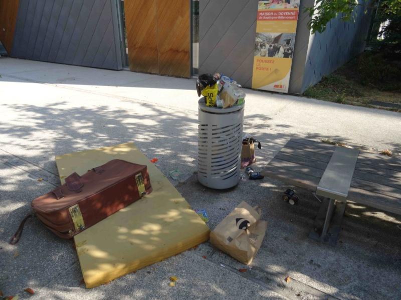Encombrants, poubelles et caddies Dsc09062