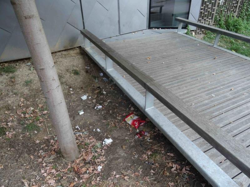 Encombrants, poubelles et caddies Dsc09065