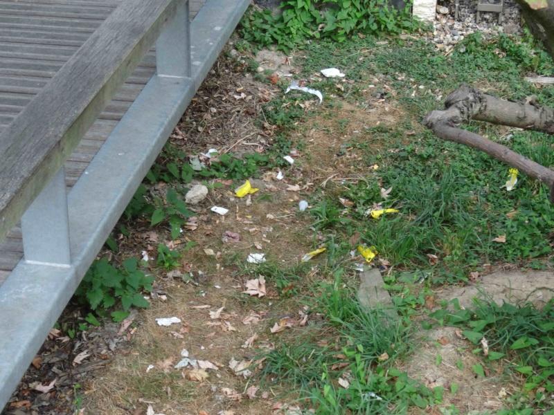 Encombrants, poubelles et caddies Dsc09066