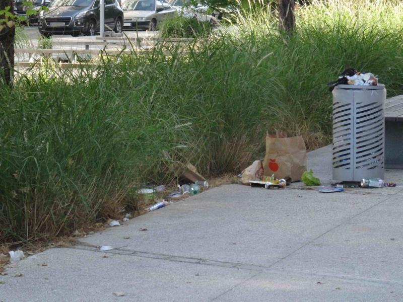 Encombrants, poubelles et caddies Dsc09068