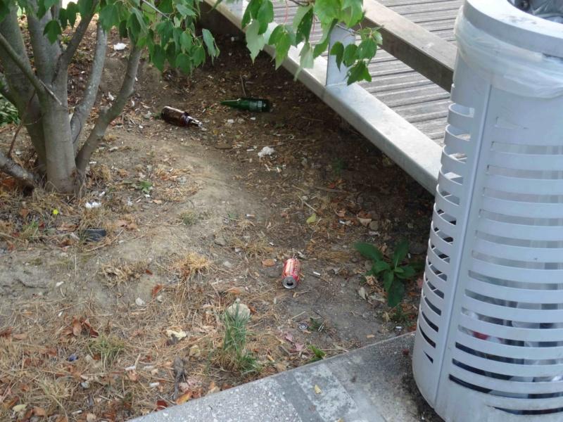 Encombrants, poubelles et caddies Dsc09116