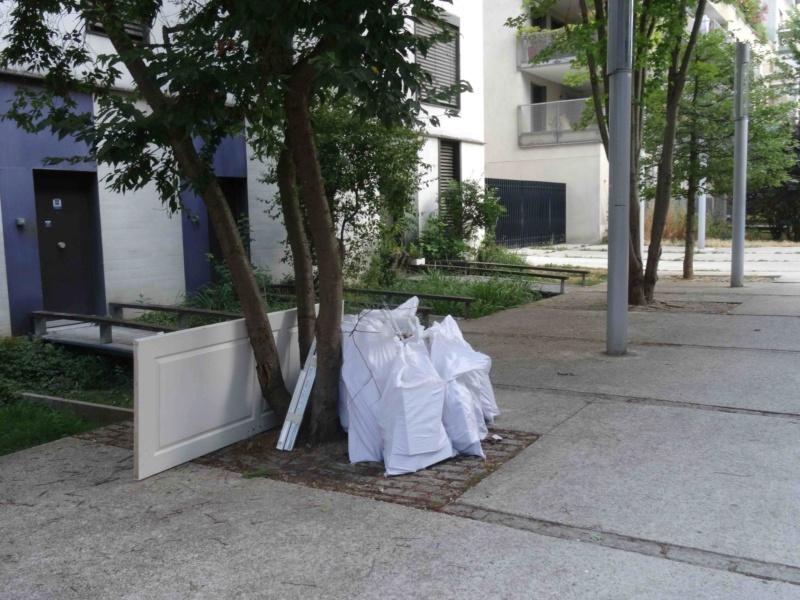 Encombrants, poubelles et caddies Dsc09221