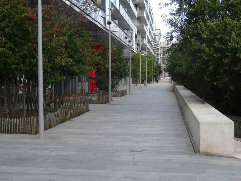 Véhicules sur voies piétonnes (allée Askinazi, esplanades du parc, etc) Dsc09227