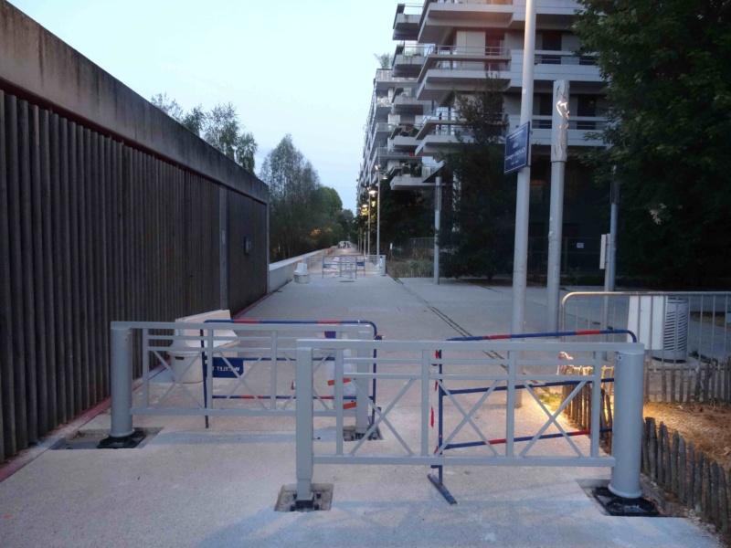 Véhicules sur voies piétonnes (allée Askinazi, esplanades du parc, etc) Dsc09311