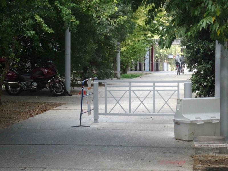 Véhicules sur voies piétonnes (allée Askinazi, esplanades du parc, etc) Dsc09415