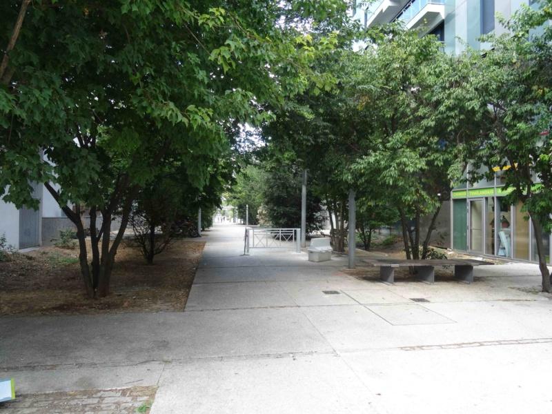 Véhicules sur voies piétonnes (allée Askinazi, esplanades du parc, etc) Dsc09418
