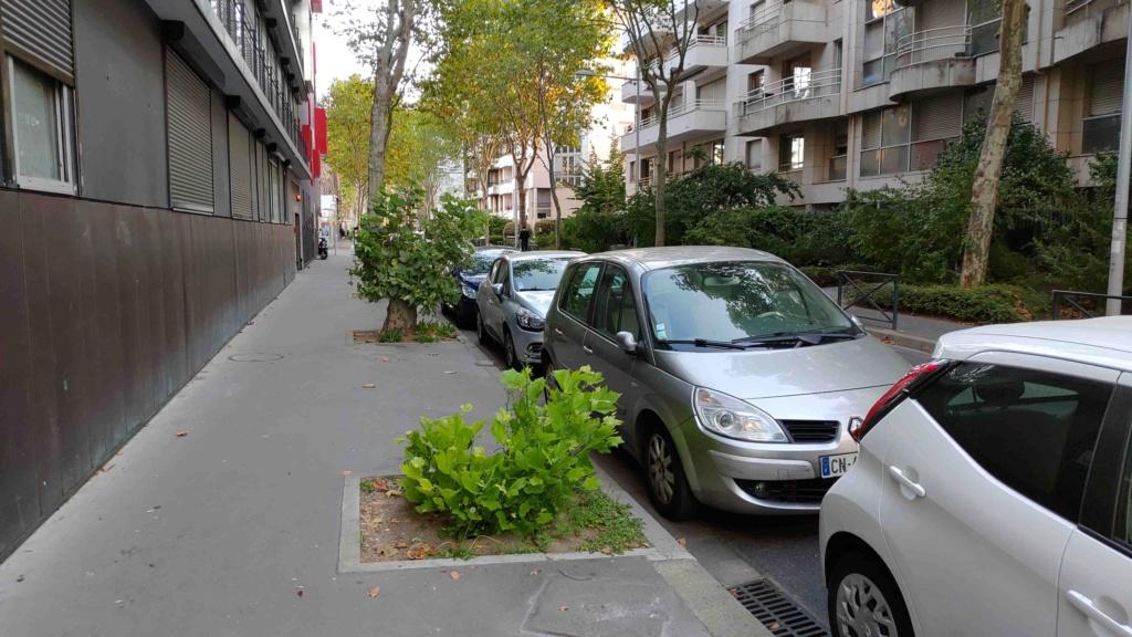 Avenue Emile Zola P_201953