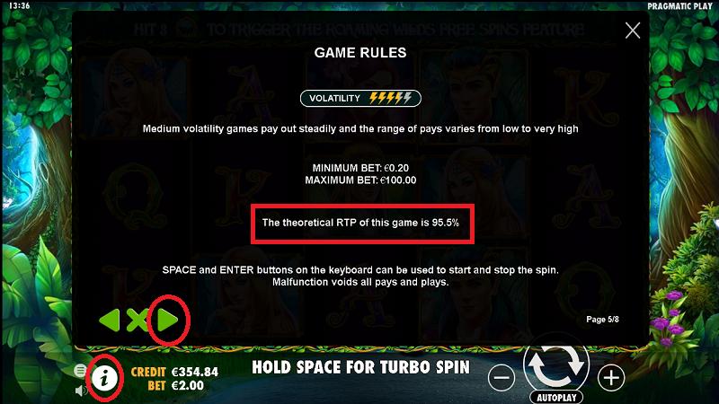 Wszystko o RTP (Return To Player) - czy da się oszukać automaty do gier? Wild10