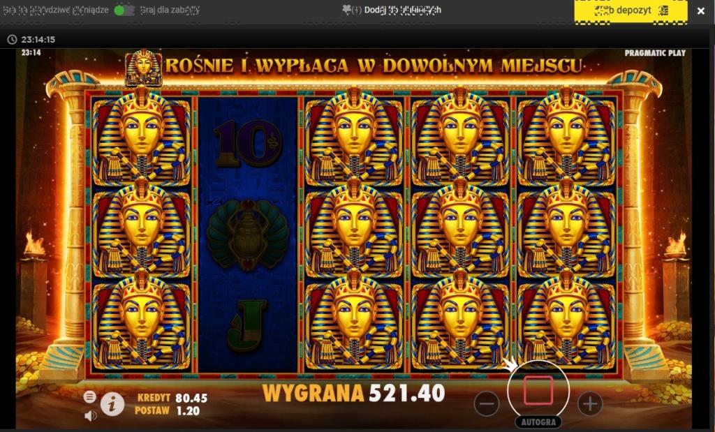 Screenshoty naszych wygranych (minimum 200zł - 50 euro) - kasyno - Page 43 Book_o12