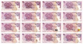 ¿Se pueden coleccionar todos los billetes de un país? PAPUA NUEVA GUINEA - Página 2 Befunk15