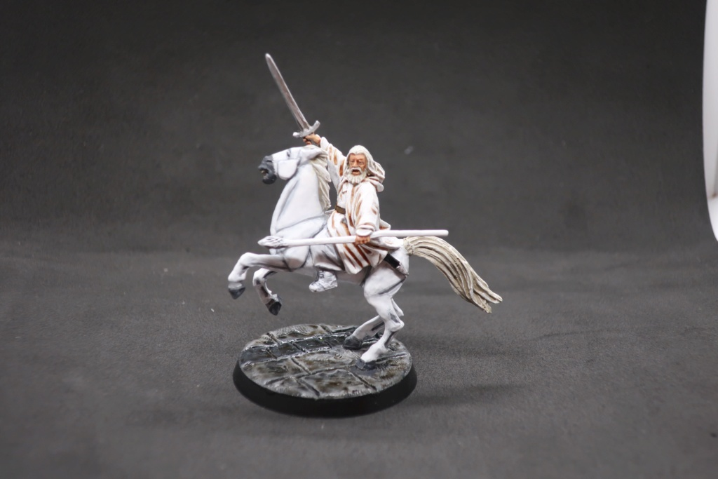 Petite armée de Minas Tirith - Cancun Img_0510