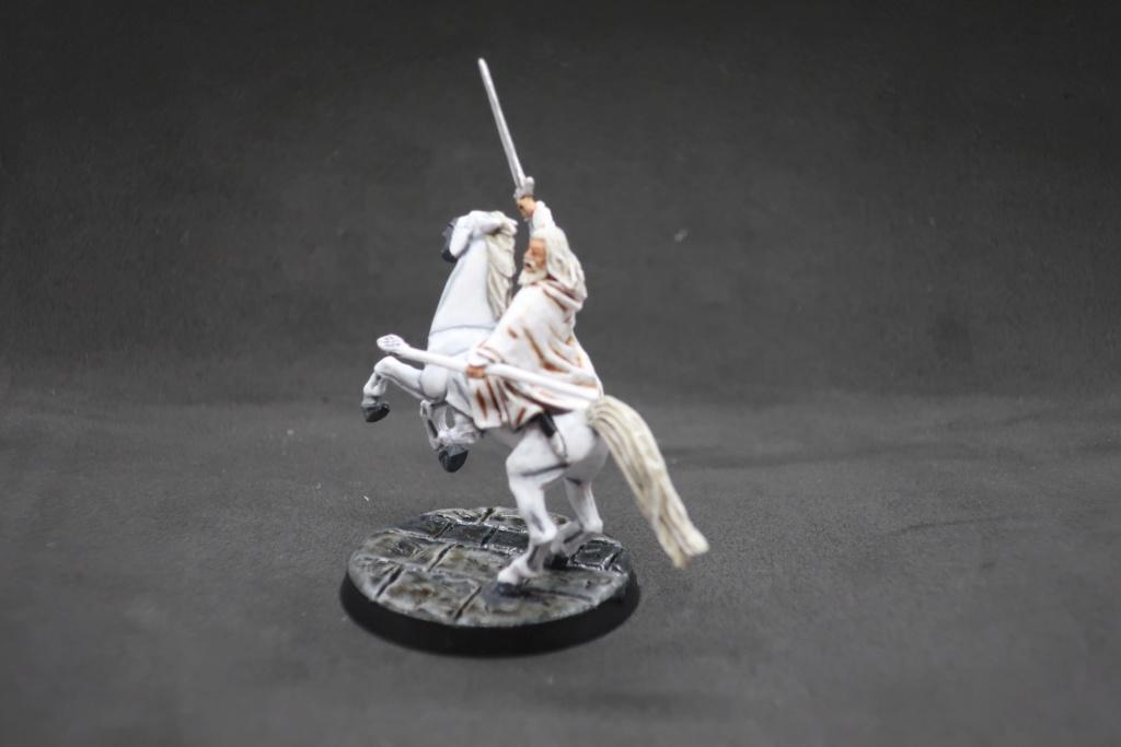 Petite armée de Minas Tirith - Cancun Img_0513