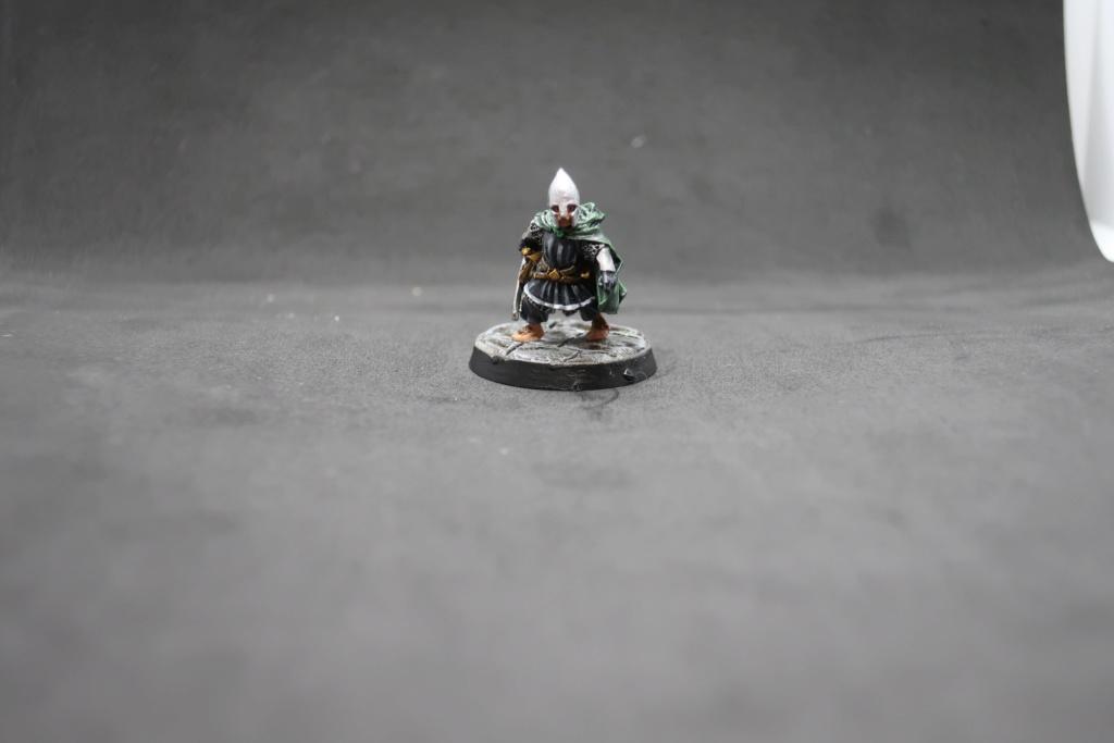 Petite armée de Minas Tirith - Cancun Img_0610