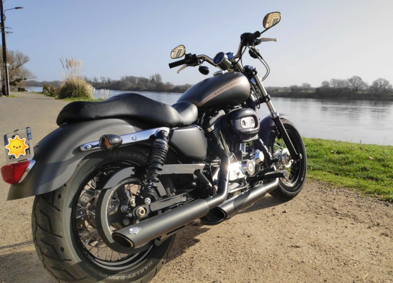 combien sommes nous en 1200 Sportster sur Passion-Harley - Page 39 Img-2012