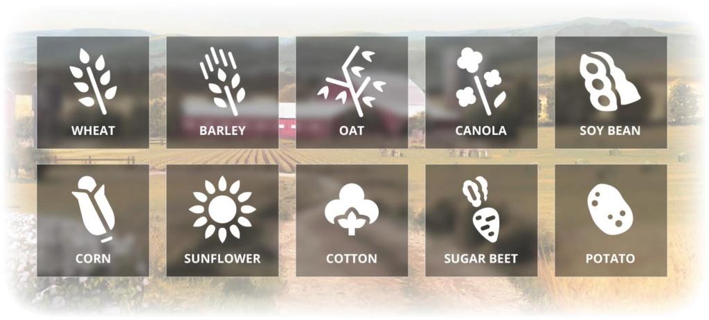 Farming Simulator 19 : devBlog #3 : Nouvelles cultures et lutte contre les mauvaises herbes 0310