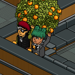 Album photo de Shayrin - Page 2 Habbo_10