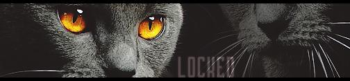 Algemene Onzin Topic  - Pagina 2 Locked10