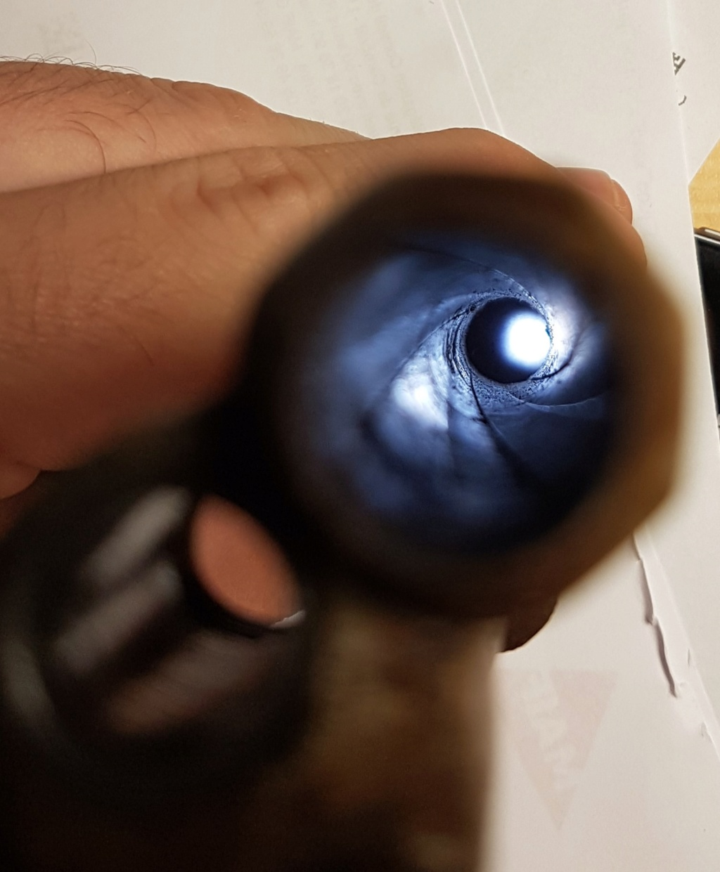 Identification revolver type Lefaucheux 20191015