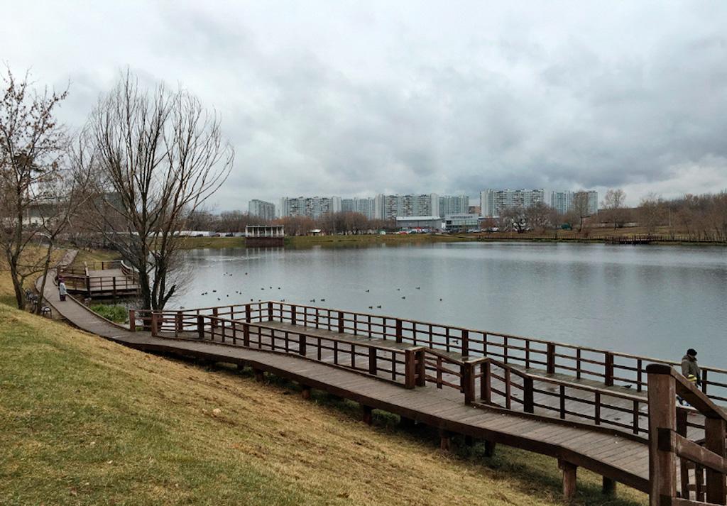 Лосиноостровский вошёл в число лучших районов Москвы по экологическим показателям S_110