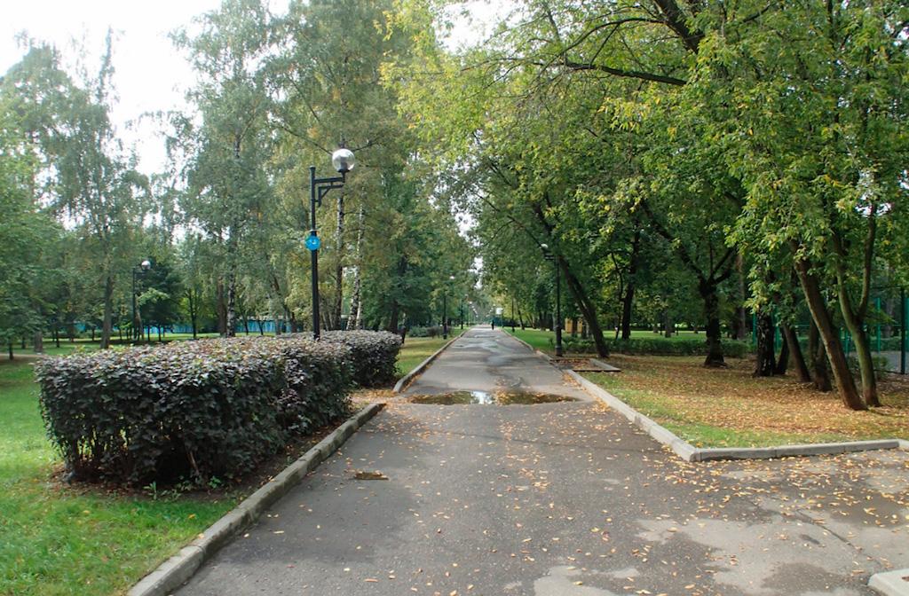 Лосиноостровский вошёл в число лучших районов Москвы по экологическим показателям S_210