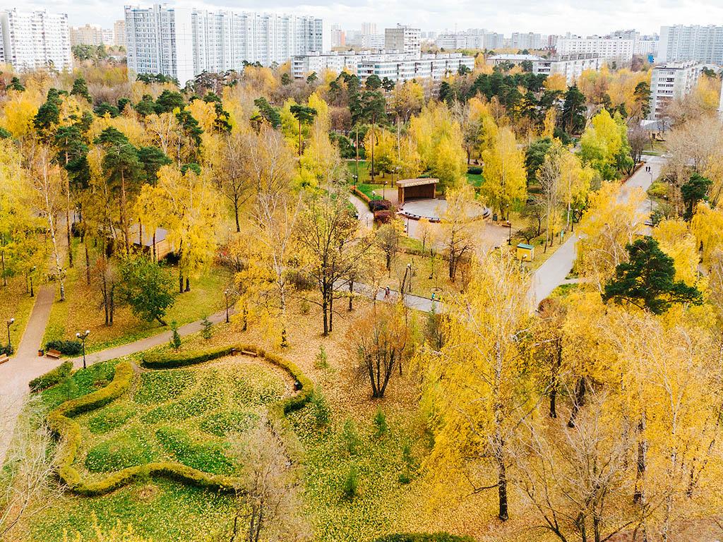 Лосиноостровский вошёл в число лучших районов Москвы по экологическим показателям S_410