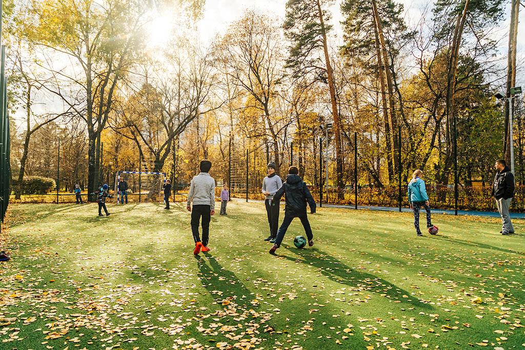 Лосиноостровский вошёл в число лучших районов Москвы по экологическим показателям S_810