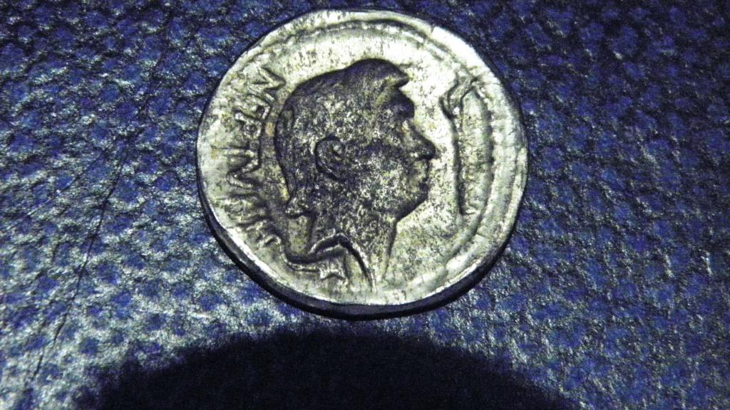 Denario falso de Pompeyo Magno P1011011