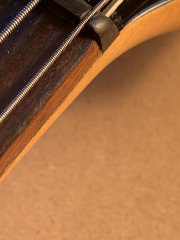 BASS - What necks will fit a Genesis bass D3193210