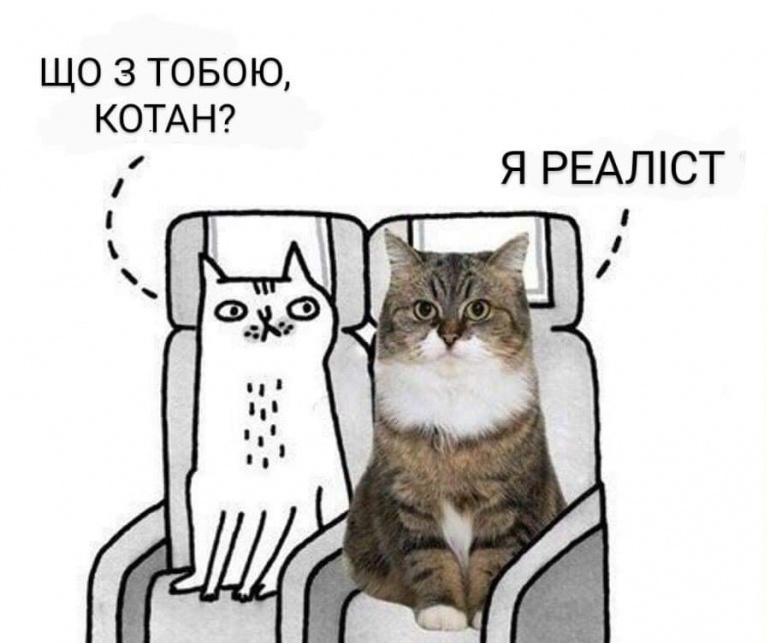 Коте A_114_10