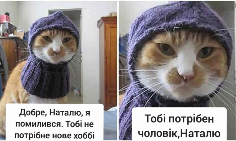 Коте A_1410