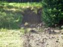 Orage du 07 août 2008 à Riotord Dscn0313
