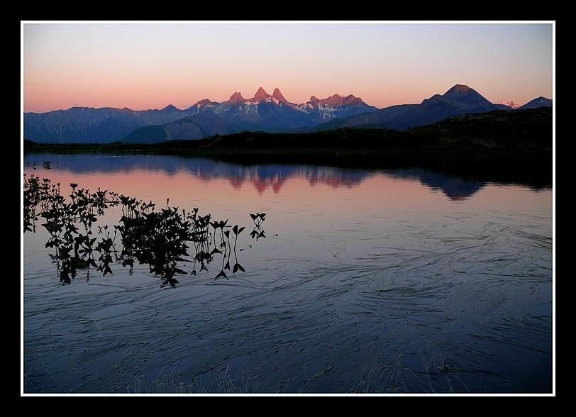 Lacs alpins début juillet P1400711