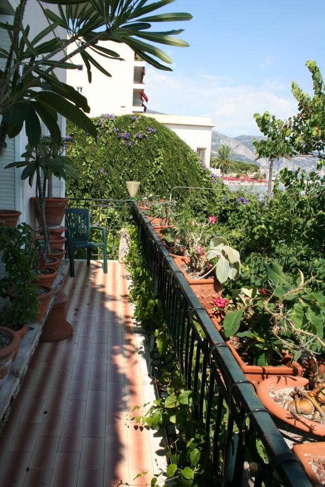 L'histoire de votre jardin Balcon10