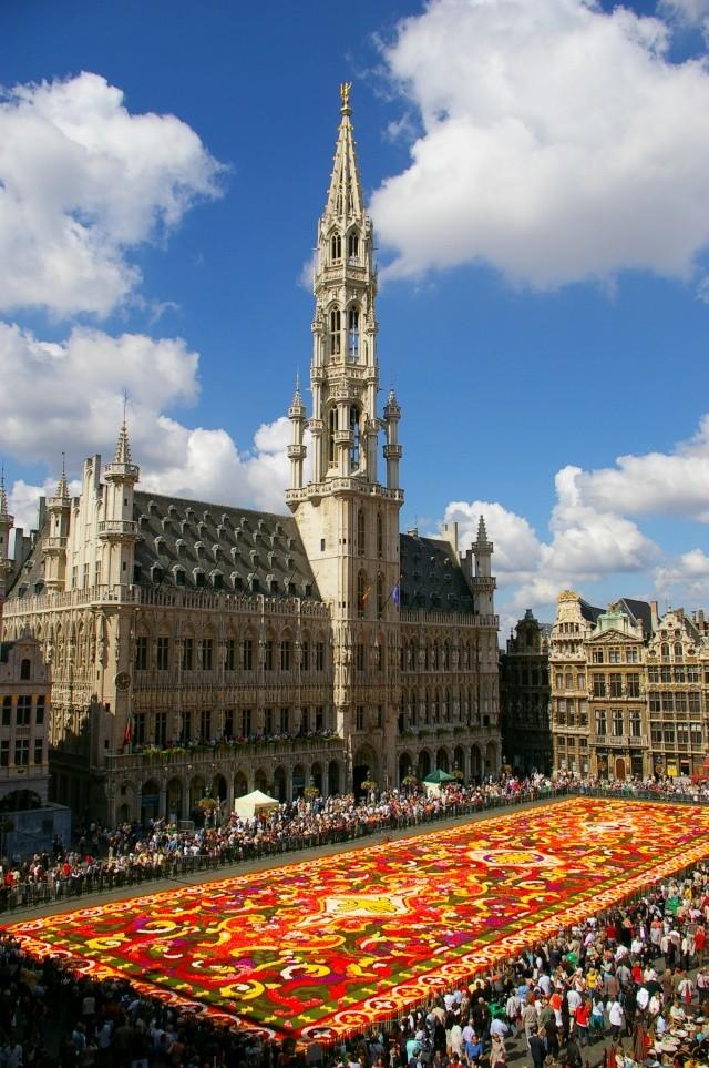 Le tapis de fleurs sur la grand-place de Bruxelles Sg1l7210
