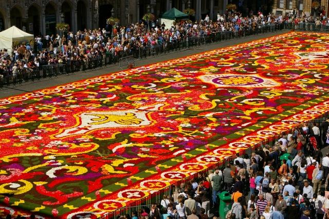 Le tapis de fleurs sur la grand-place de Bruxelles Sg1l7211